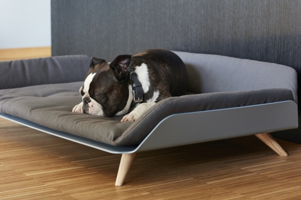 Dog sofa couch with cushion metal frame wood