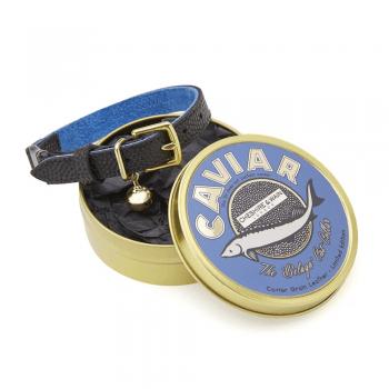 Cat collar gift tin Black Caviar
