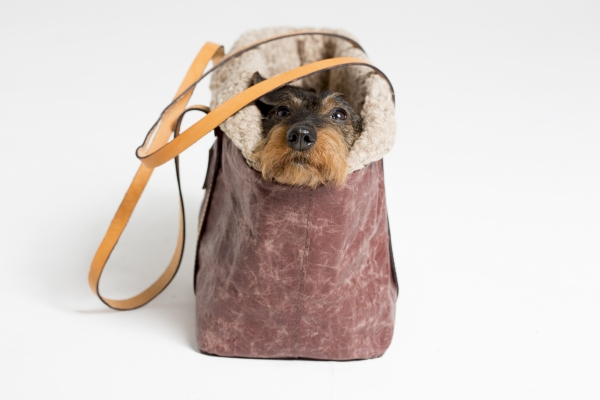 Make them Roar dog carrier made from natural environmentally friendly material 5