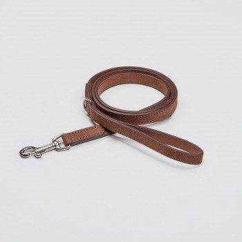 Waxed brown leather dog lead Stanley Park