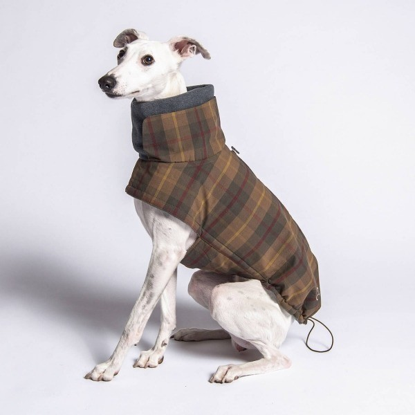 Tartan waterproof dog jacket
