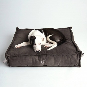Mocca coloured elevated dog bed Cozy