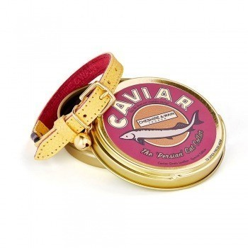 "Cheshire & Wain's luxury ""Caviar Collection"" gets maximalist colour update"
