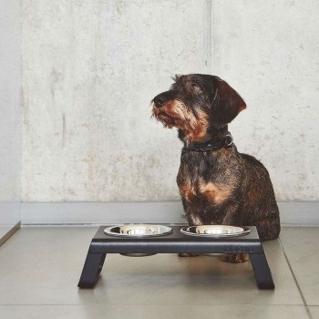 modern black dog feeding station 3