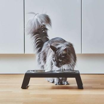 modern grey cat feeding station 1