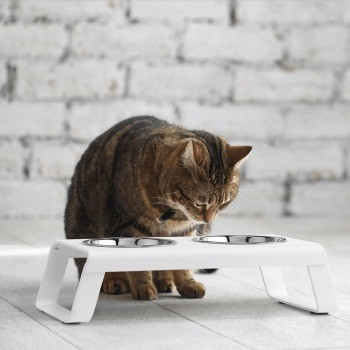 modern white cat feeding station