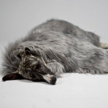Warm faux fur dog blanket Föra
