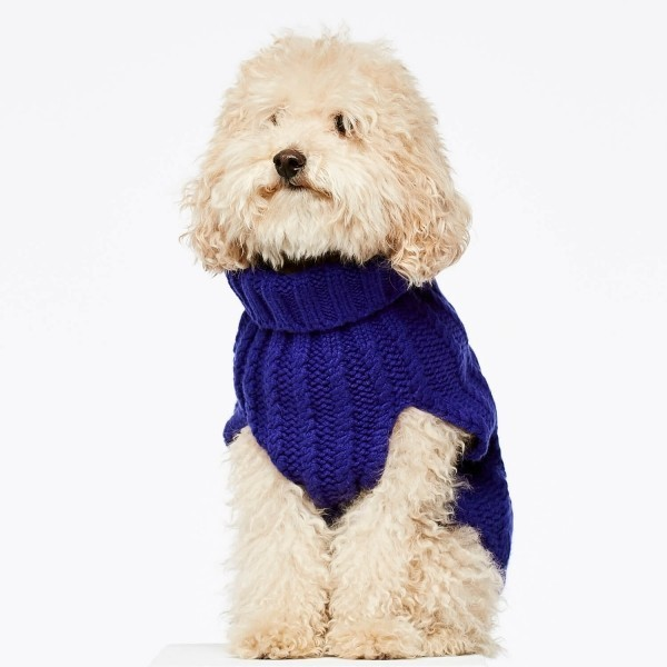Blue cashmere and merino wool luxury dog jumper 4