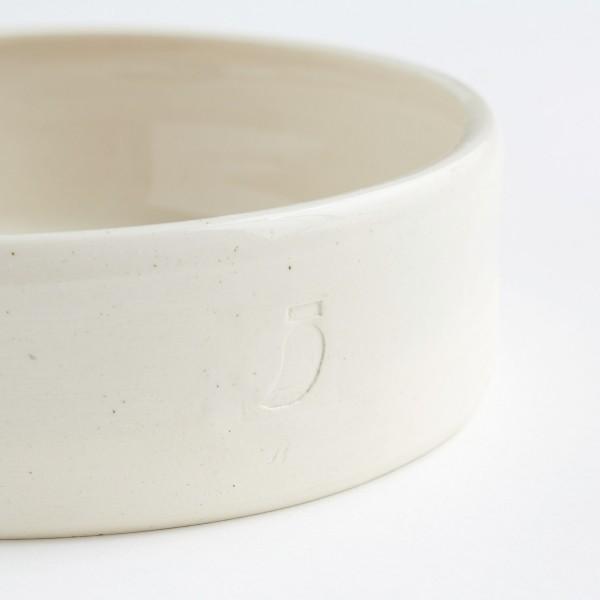 ceramic dog water and food bowl