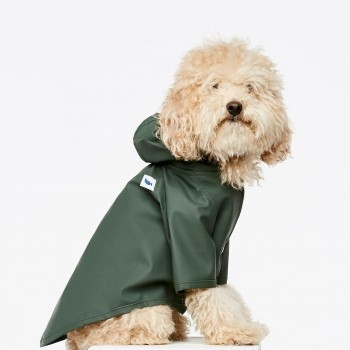 Green fisherman dog raincoat Sarah