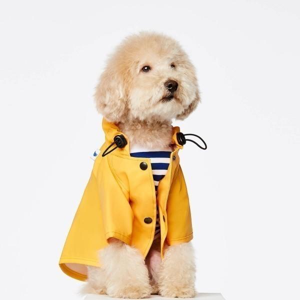 Yellow fisherman dog raincoat Sarah
