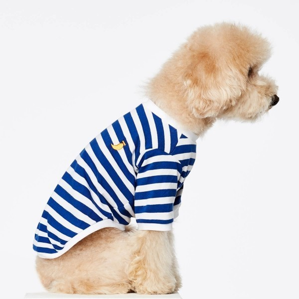 Blue Breton t-shirt for dogs DAVID