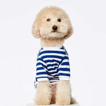 Blue stripe Breton t-shirt for dogs David