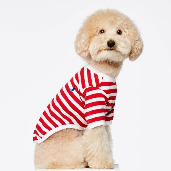 Red stripe Breton t-shirt for dogs David