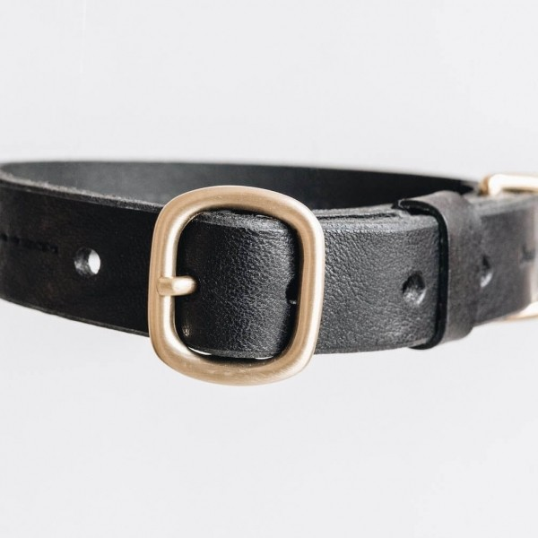 Leather dog collar with a customisable metal tag Fir