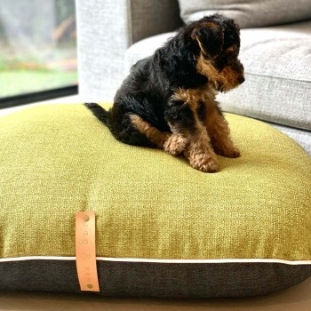 Two-toned cushion FIKA MOSS