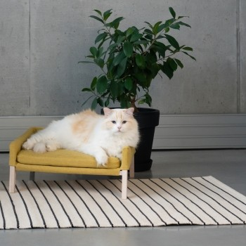Elevated cat sofa Lulu