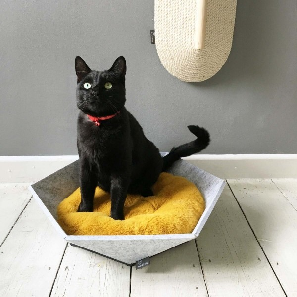 Small pet bed made from recycled felt   Atomo