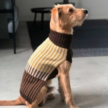 Alpaca wool dog jumper FRANCESCA