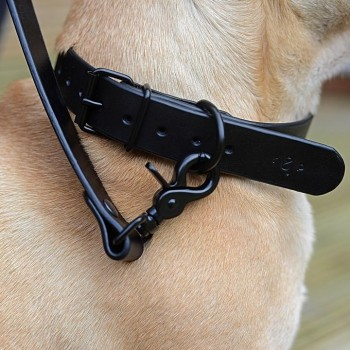 Black leather dog collar NOTTE