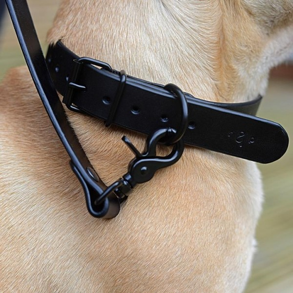 Black leather dog collar NOTTE