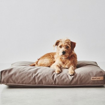MiaCara Stella classic dog cushion SAFFRON
