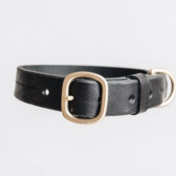 Black luxurious leather collar with taf FIR