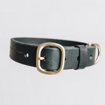 Green luxurious leather collar with taf FIR