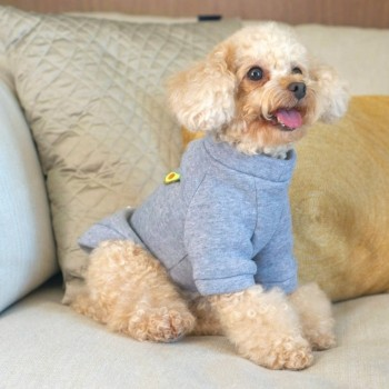 Embroidered cotton and fleece dog jumper AVOCADO