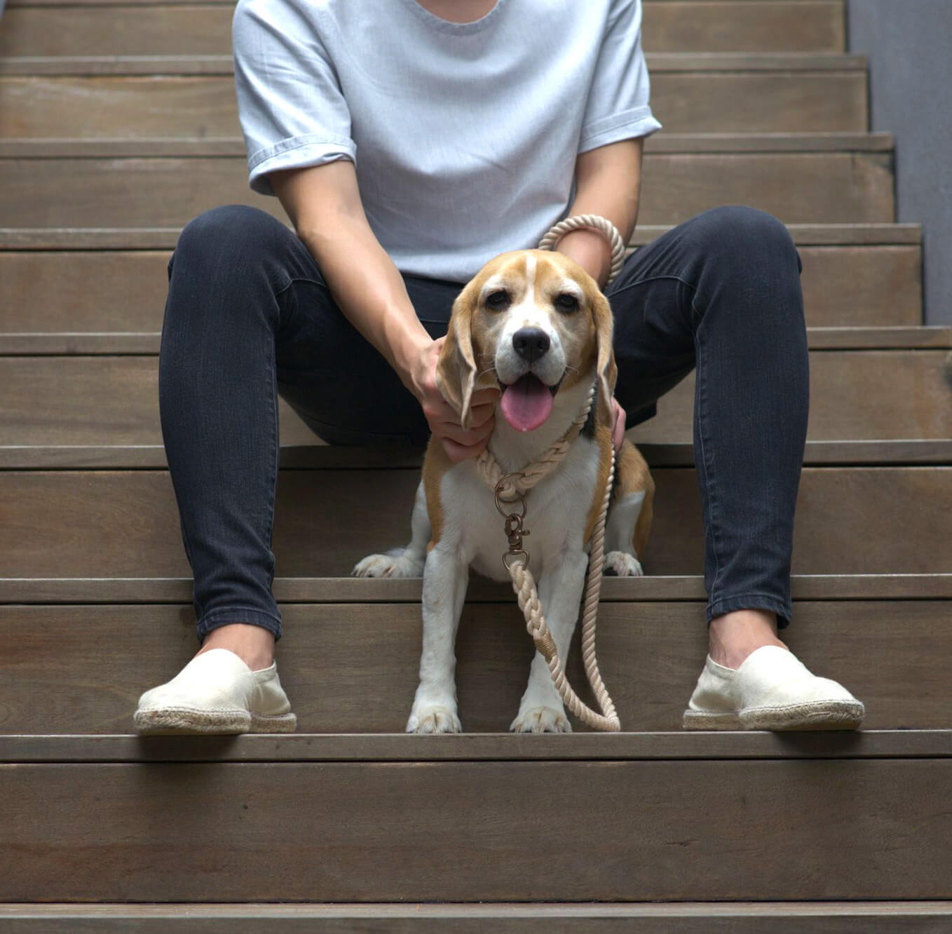 Cherishing character with Urban Monster's dog accessories