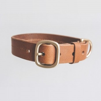 Tan leather collar with customisable tag FIR