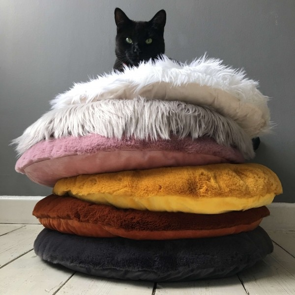 Recycled PET felt dog bed BISCUIT