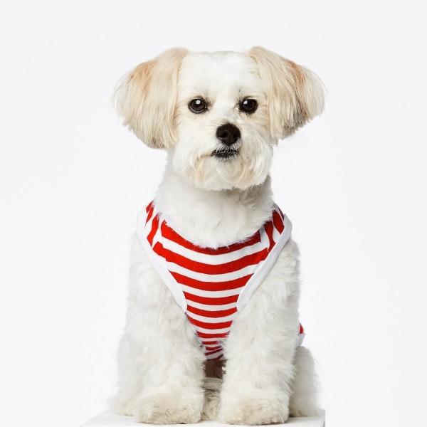 Red stripe cotton dog body DANIEL