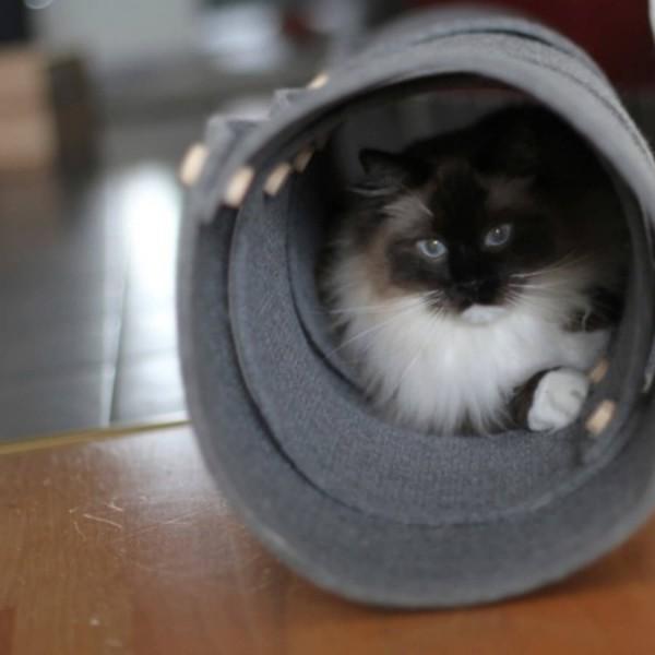 Fuzzplay felt cat tunnel SNAKERUN