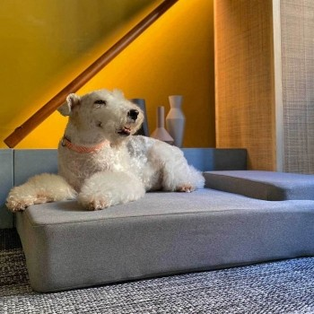 Grey memory foam dog bed SQUARE