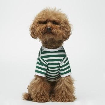 Green Breton t-shirt for dogs DAVID